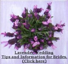 Lavender wedding tips by Lavender Fanatic.