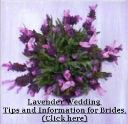Wedding Lavender by Lavender Fanatic lavender wedding flowers.