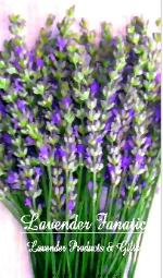 Lavender products and gifts online by Lavender Fanatic.